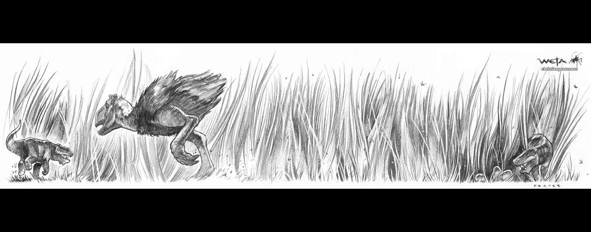 Christian pearce bird chase pearce 1200