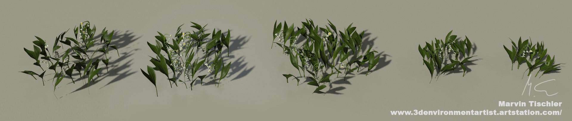 Marvin tischler plants 001 l