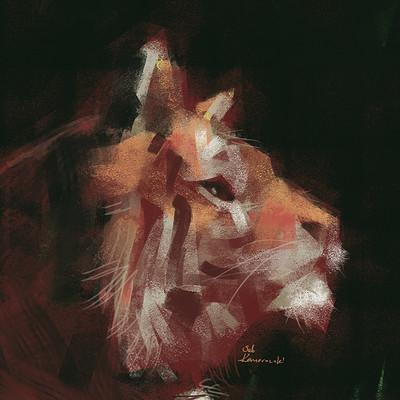 Sebastian komorowski tiger expr
