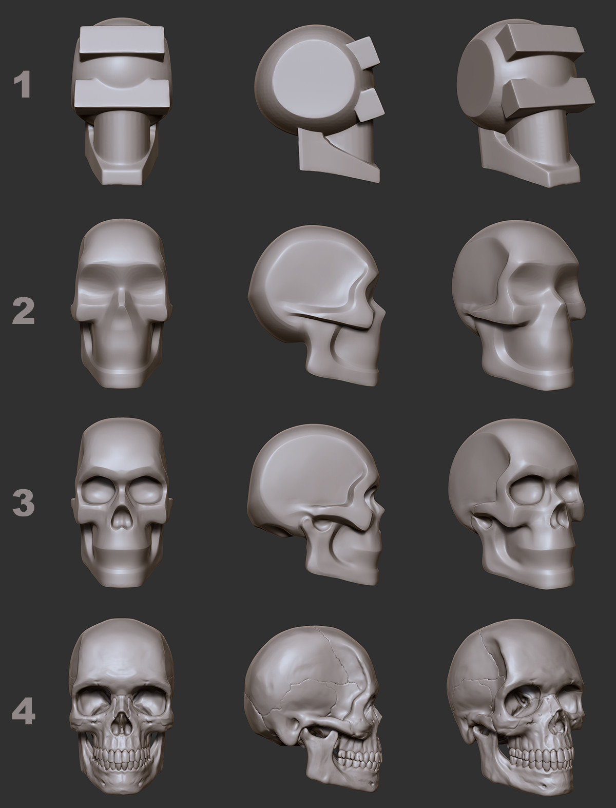 This is the process I used for sculpting the skull.  I learned this approach from Kris Costa during an online course.