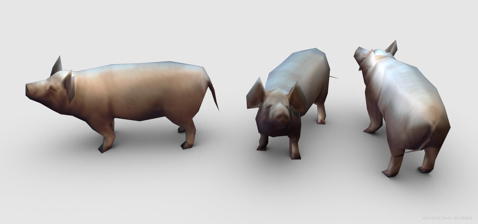 Anthony rubier render mesh porc 1