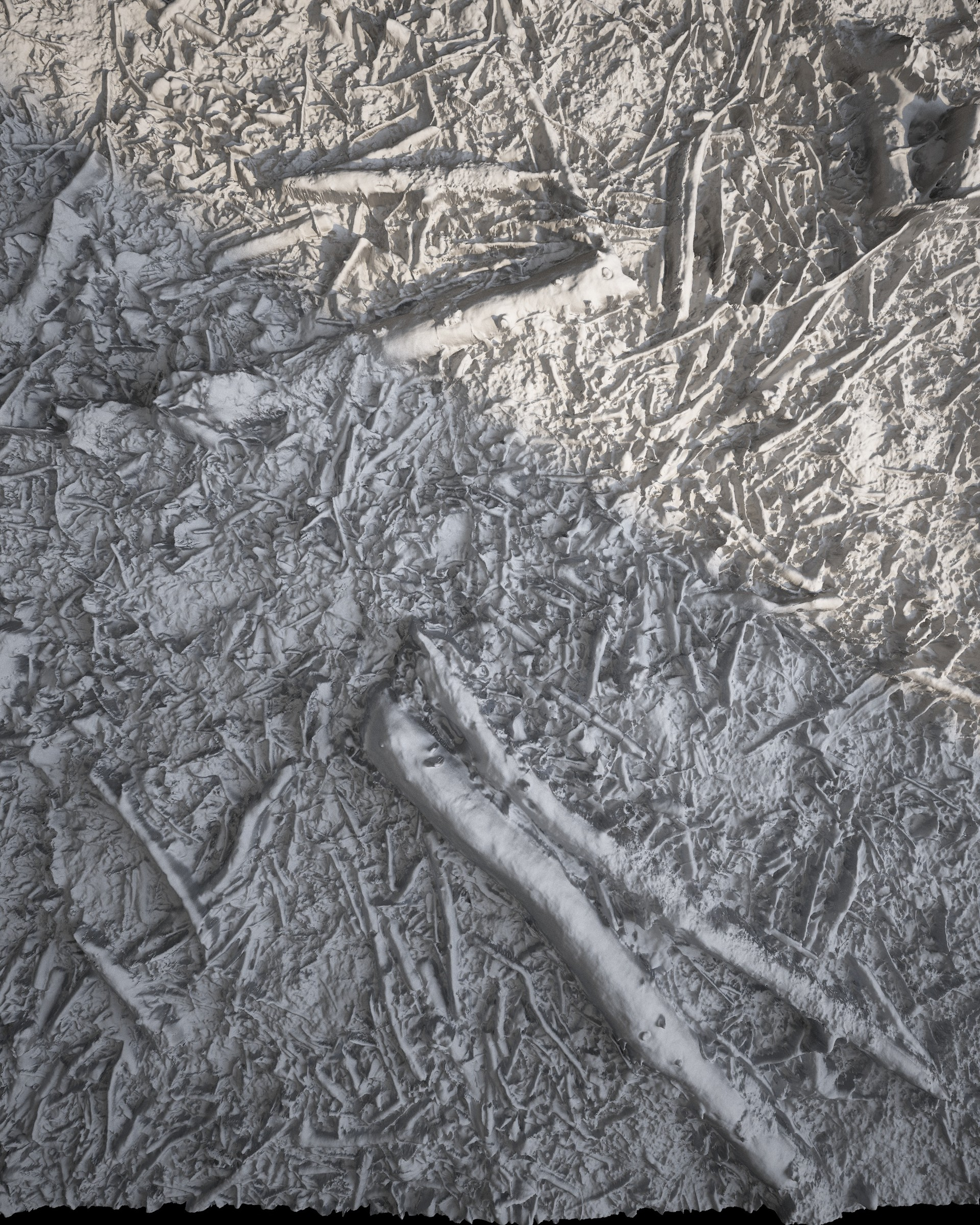 Tolga aksu displacement forest white