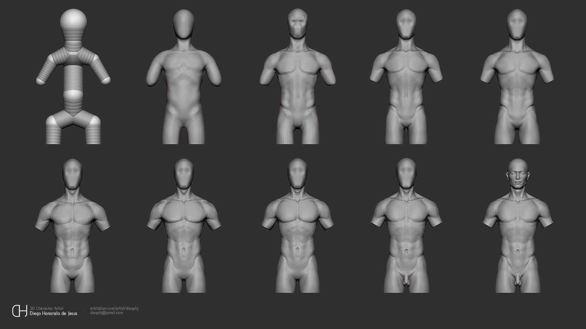 Artstation Anatomy Studies Diego Honorato