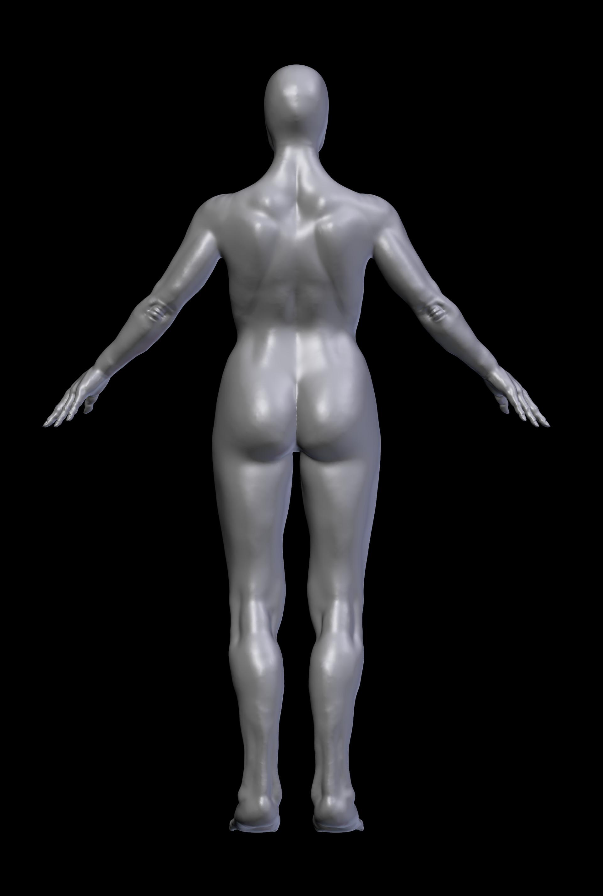Master Flaccid - Female Anatomy Practice