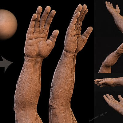 Surajit sen human hand sculpt study surajitsen