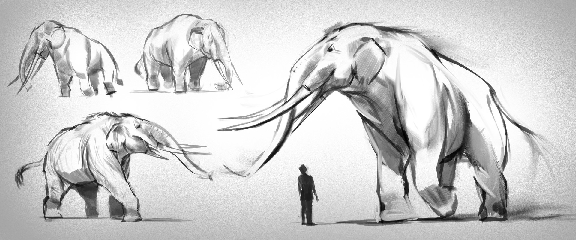 My goal was to illustrate this massive creature in a simple set up. I started by finding reference before doing some sketches (you can see some of them) The design is based on a prehistoric version of the elephant. I wanted to make it stronger than a norm