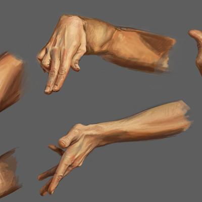 Male Hand Studies