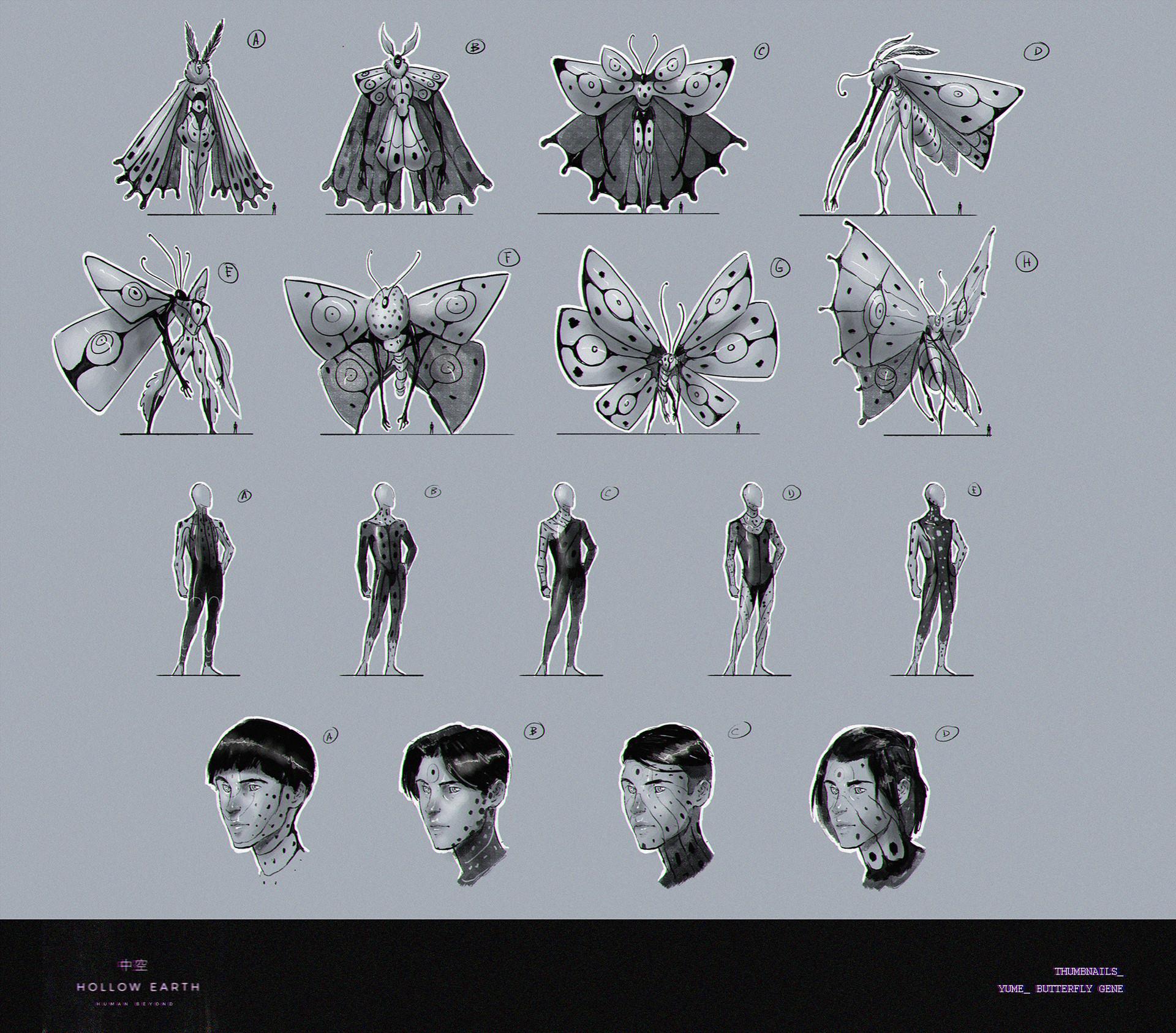 Ricardo coelho thumbnails butterfly burst