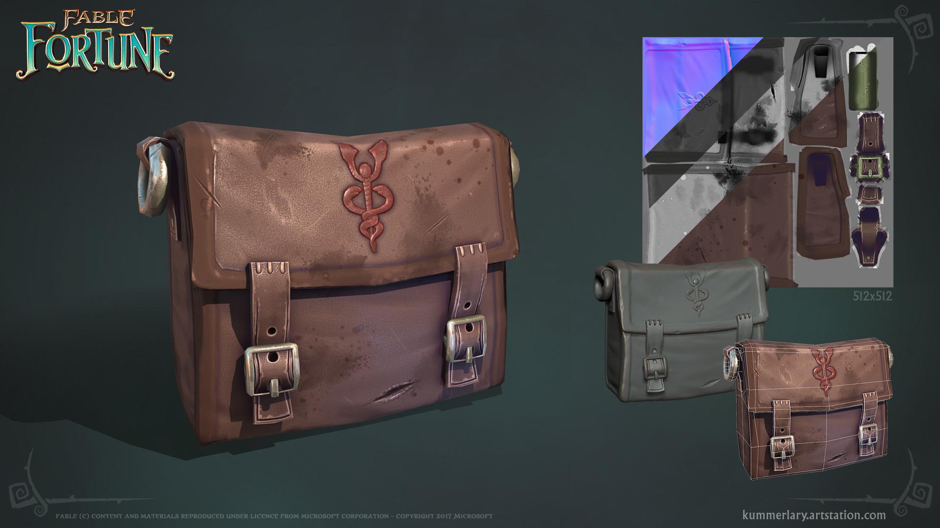 Lary kummer fablefortune satchel