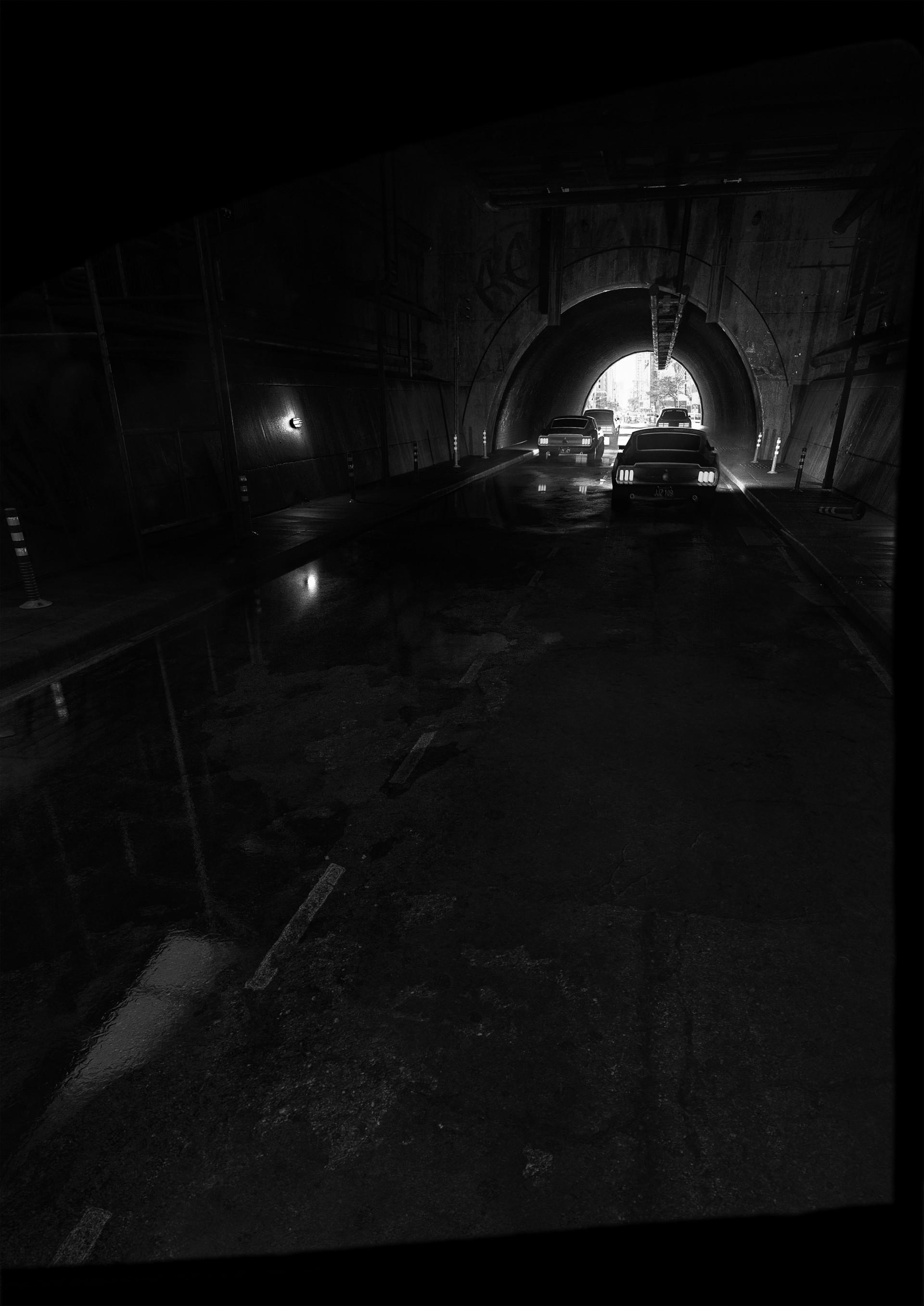 Guilherme henrique roadtunnel bw