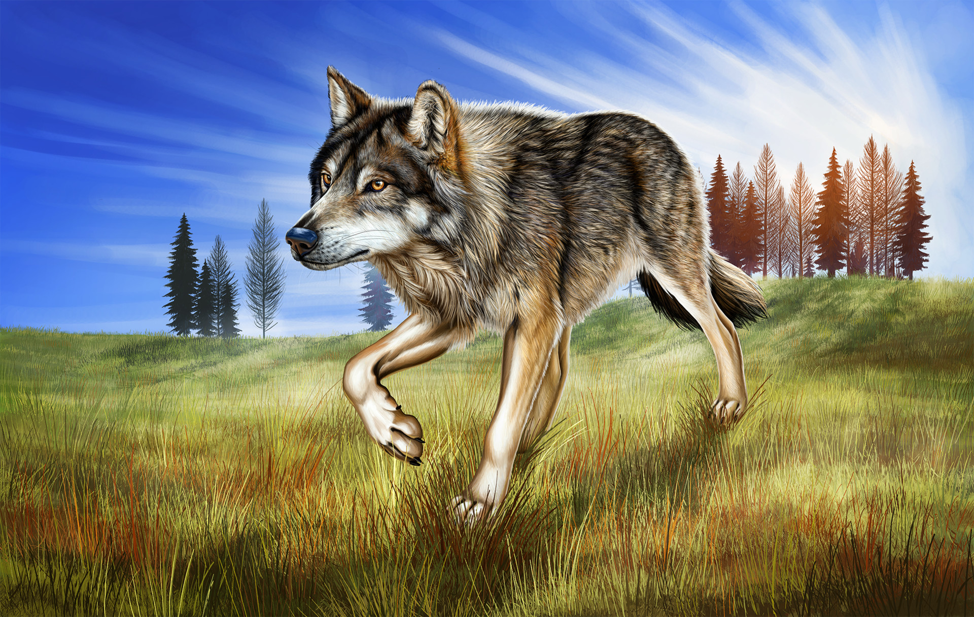 Martina nachazelova lone wolf