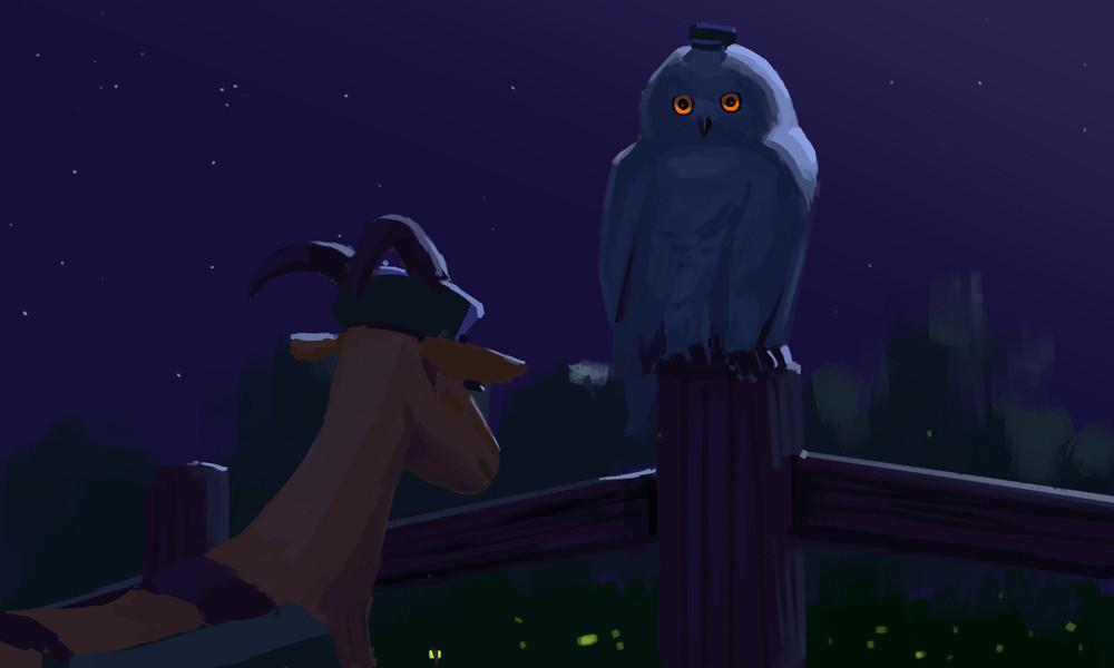 Devin platts snowy owl