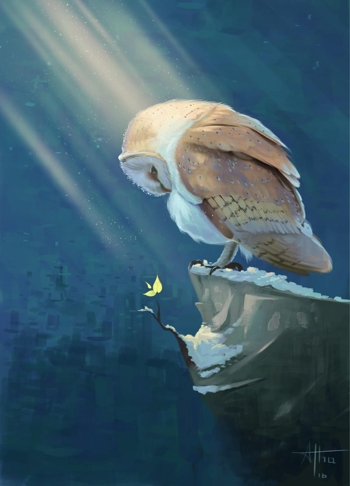 owl on a roc, personal illustration