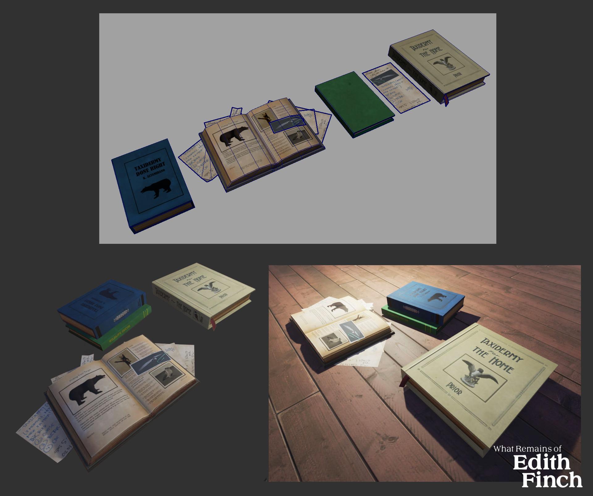 Kristen c wong altamirano books 01