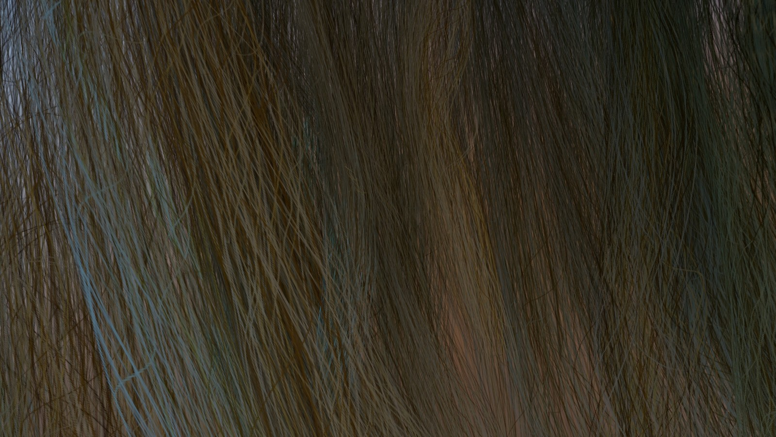 Hair closeup