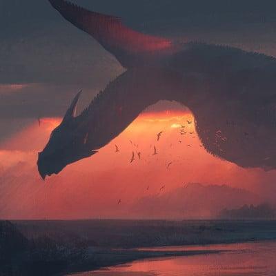 Swang sunset flight