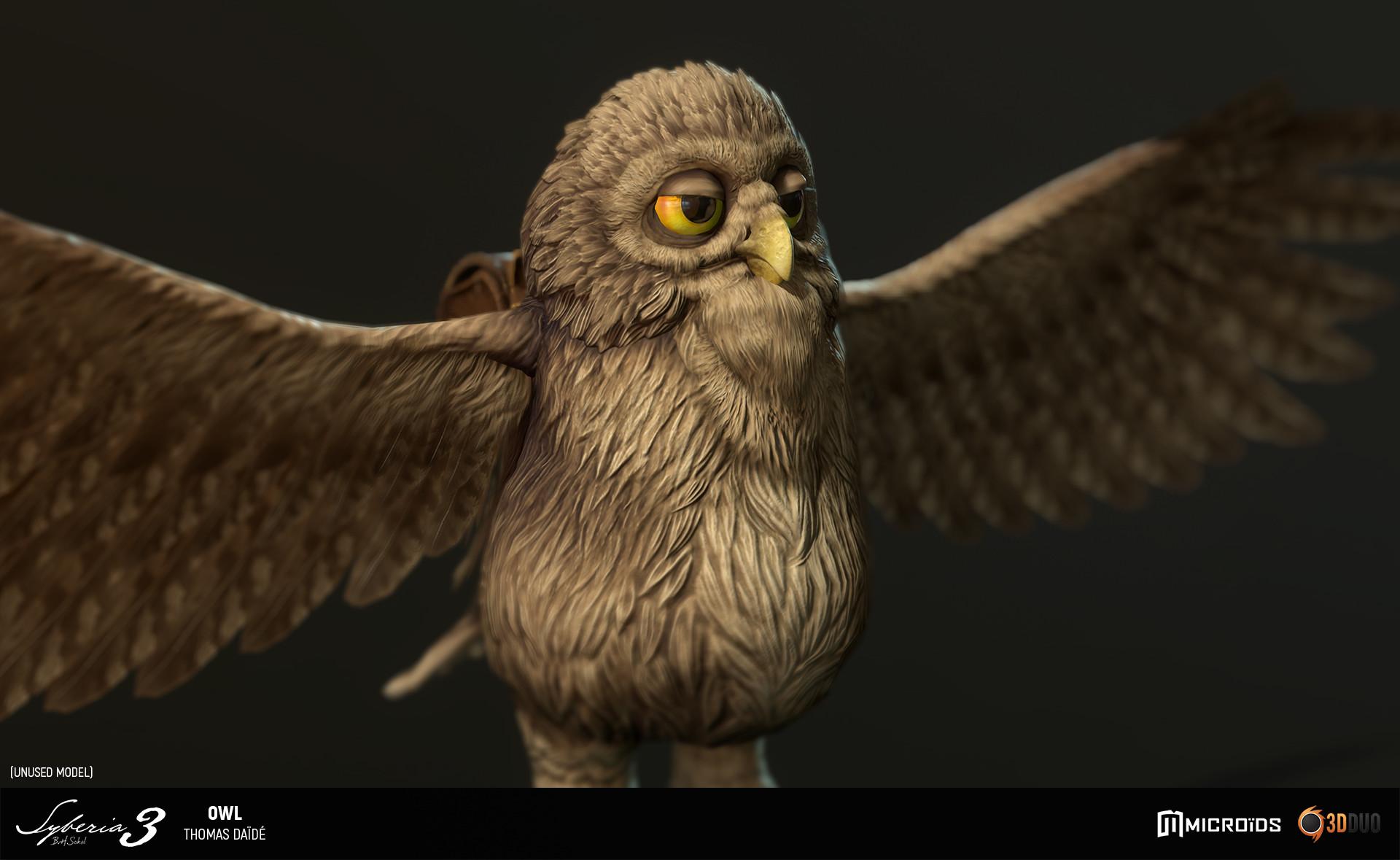 Thomas daide tdaide syb owl 02