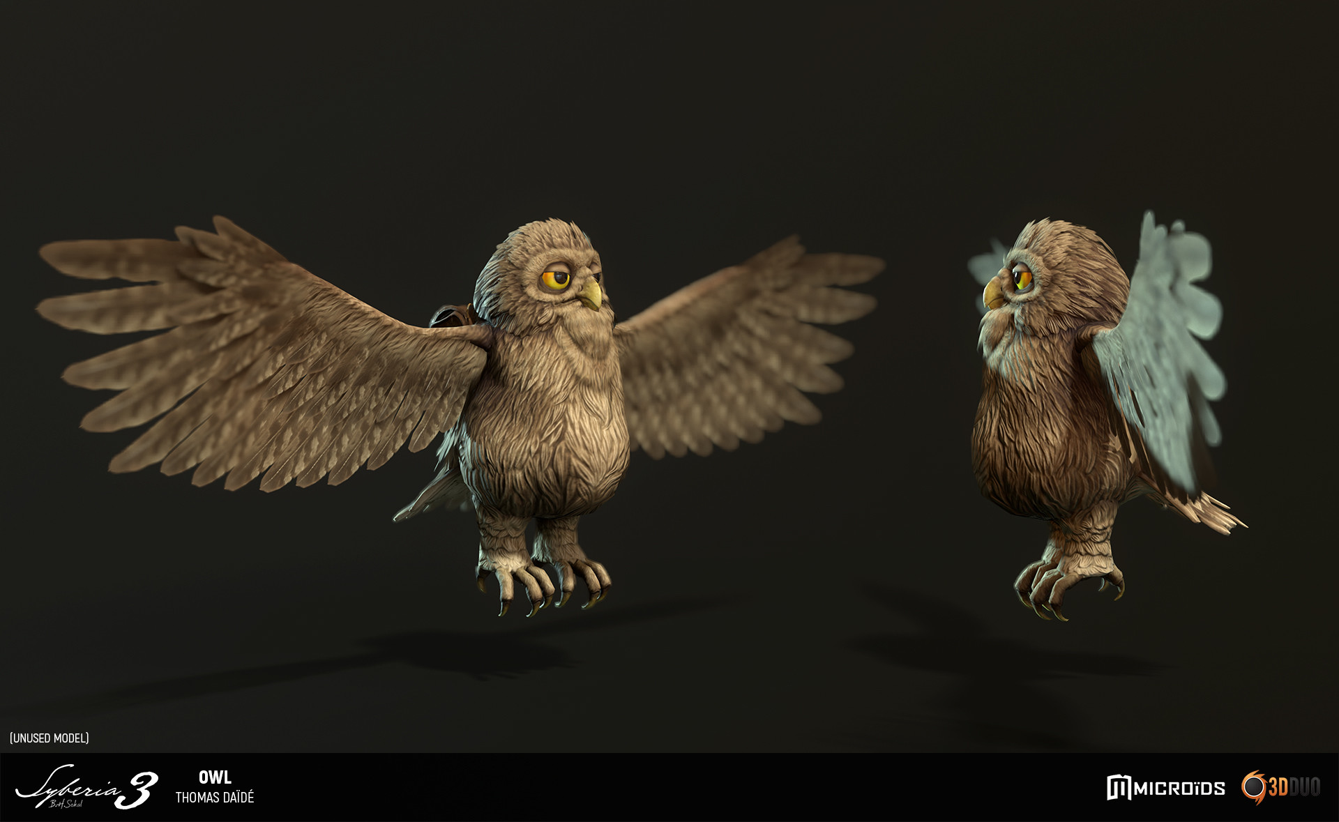 Thomas daide tdaide syb owl 04