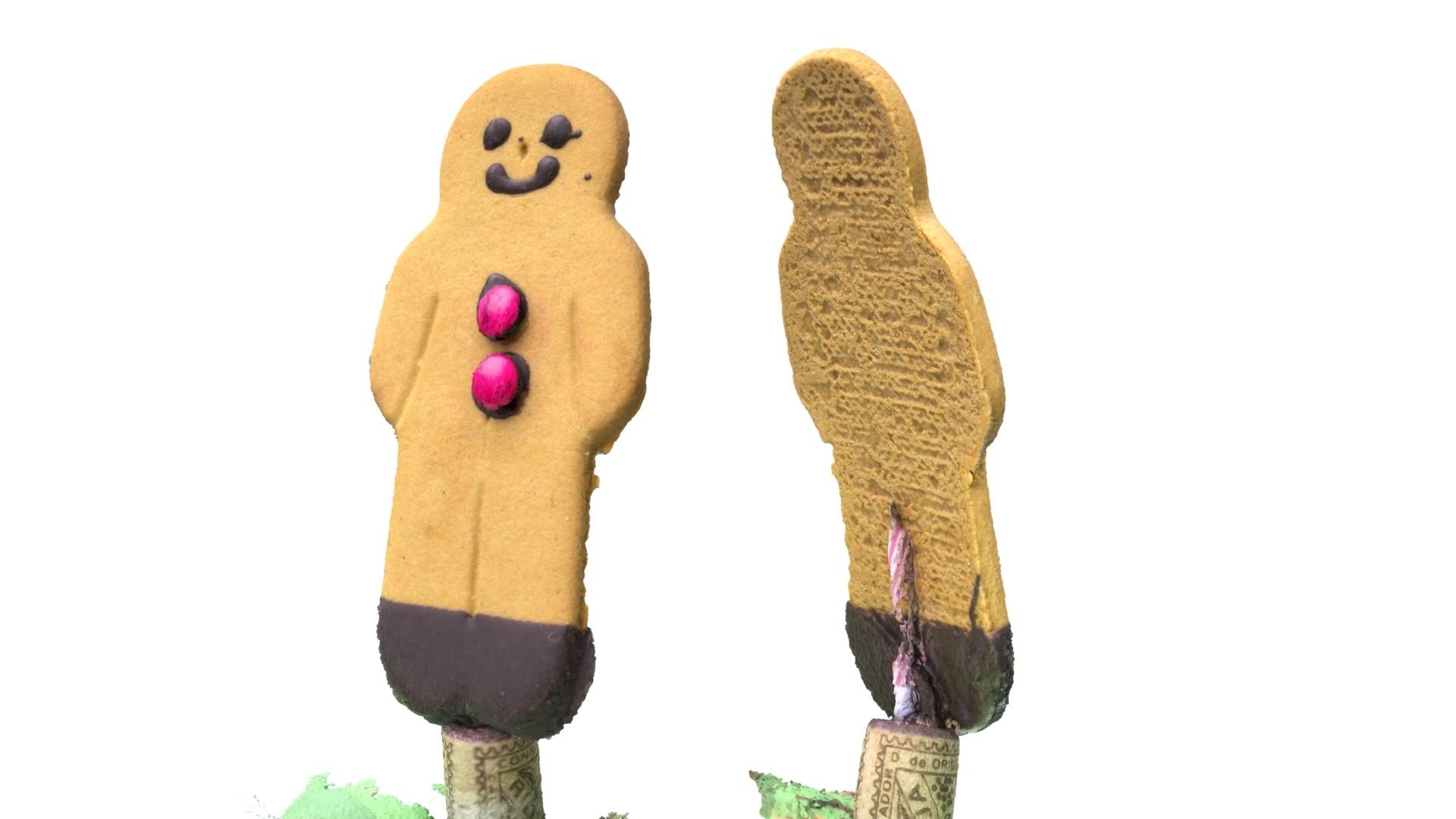 Adrian baker gingerbreadman02