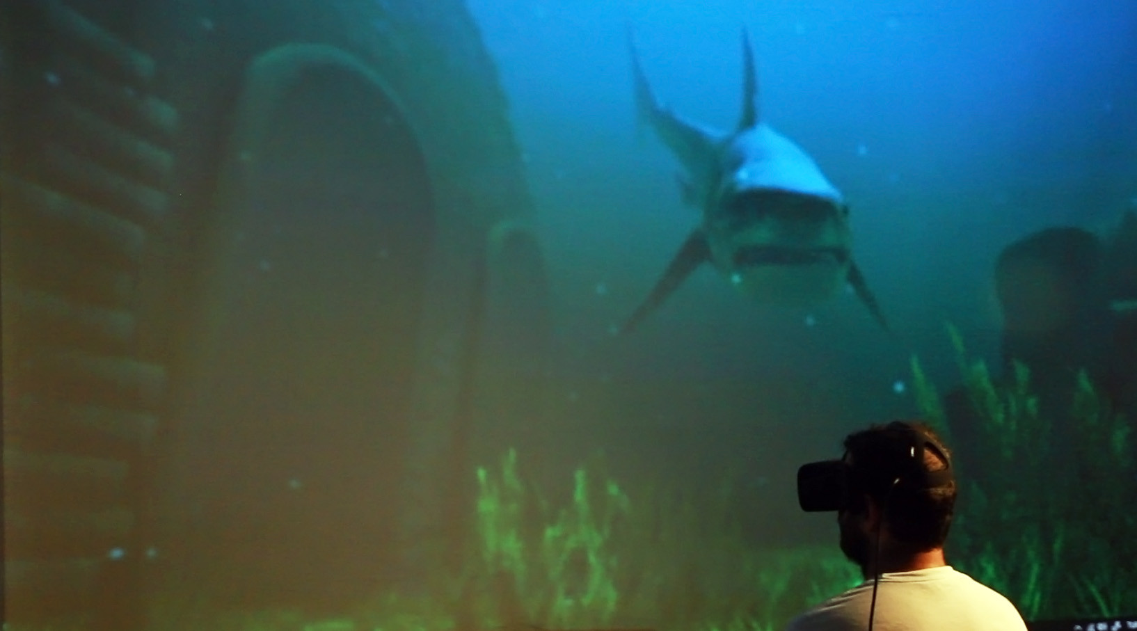 Sharks VR