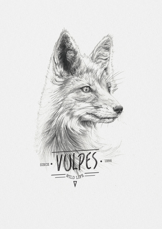 Miguel sastre foxt