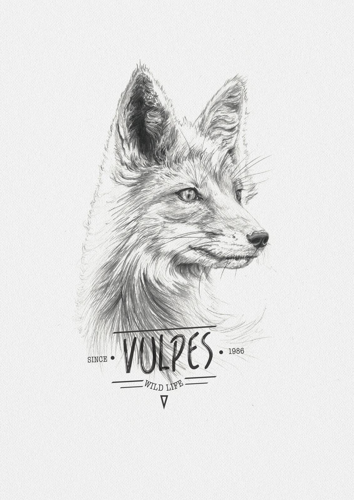 VULPES