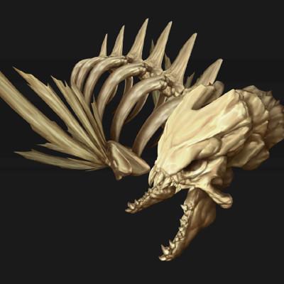 Przemyslaw golab bones texture