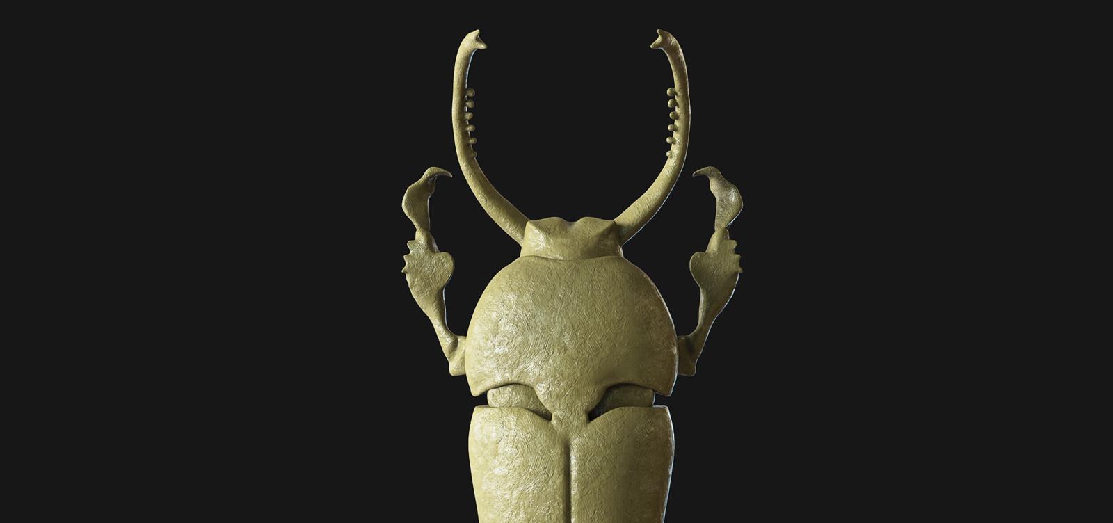 Neo Lamprima Adolphinae