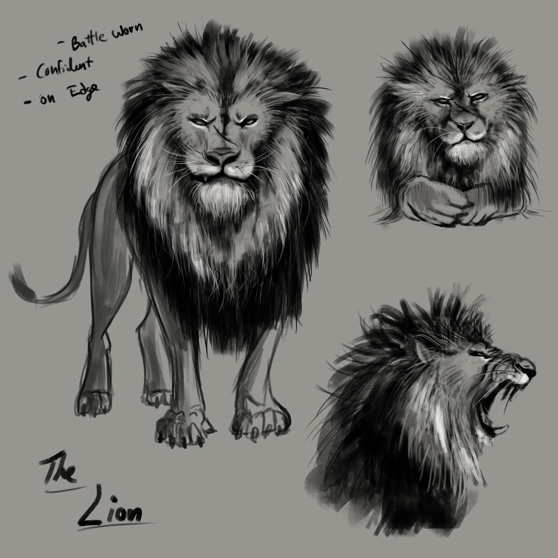 Lion character concept work