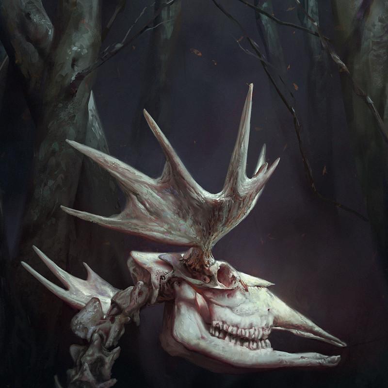 Hreindýrahorn