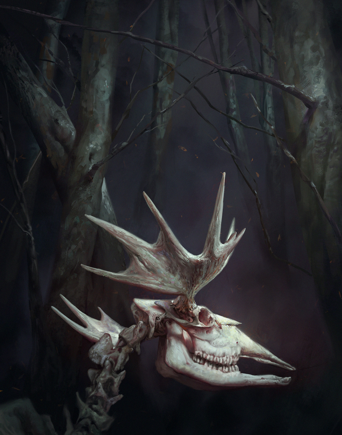 Rene aigner elk