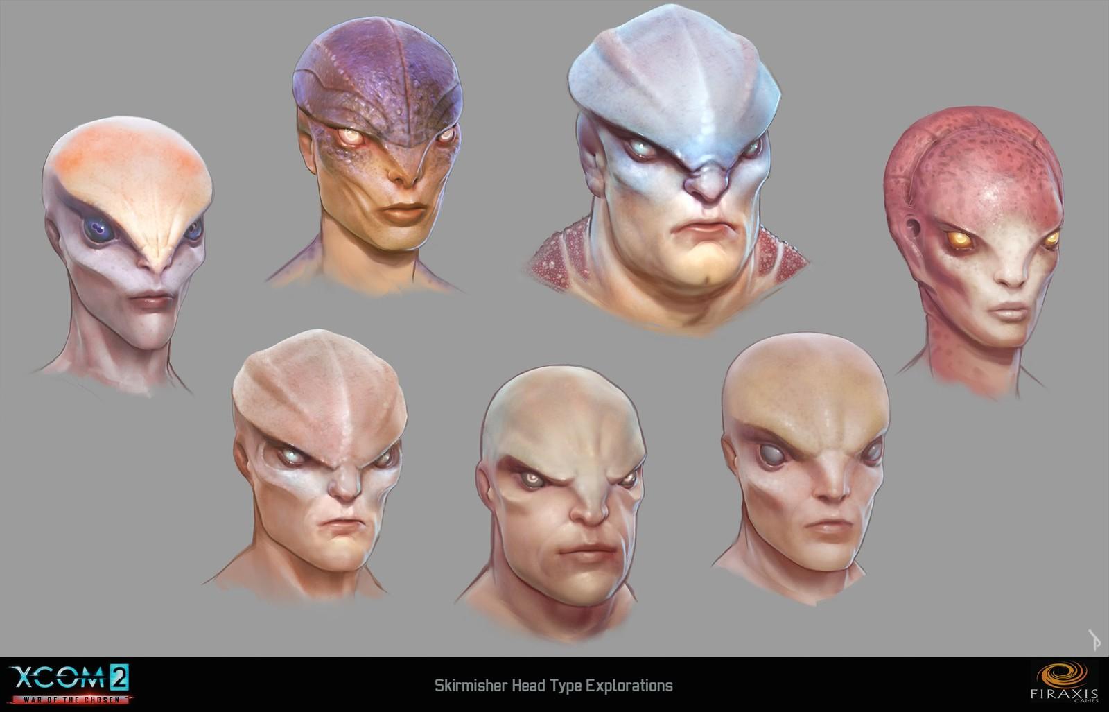 Skirmisher head type studies
