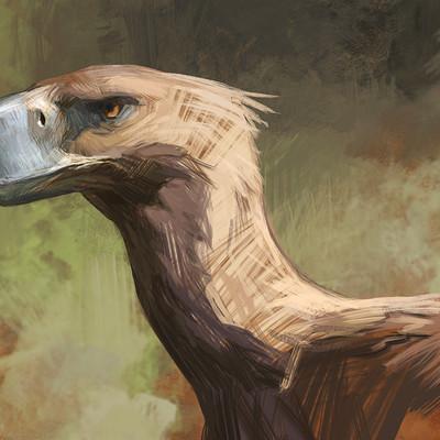 Jon kuo t bird