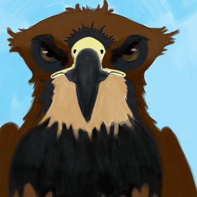 Nicholas jasper drako red tailed hawk