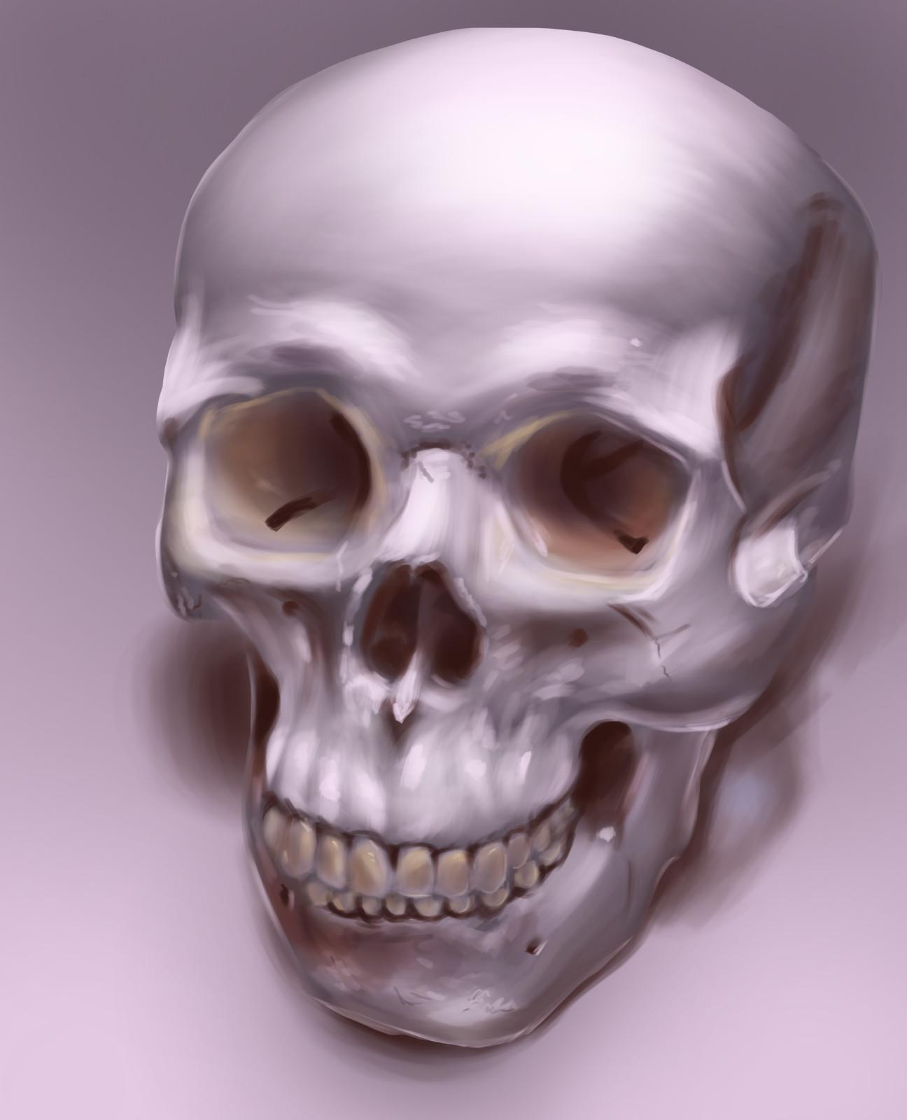 Skully Skull Still Life