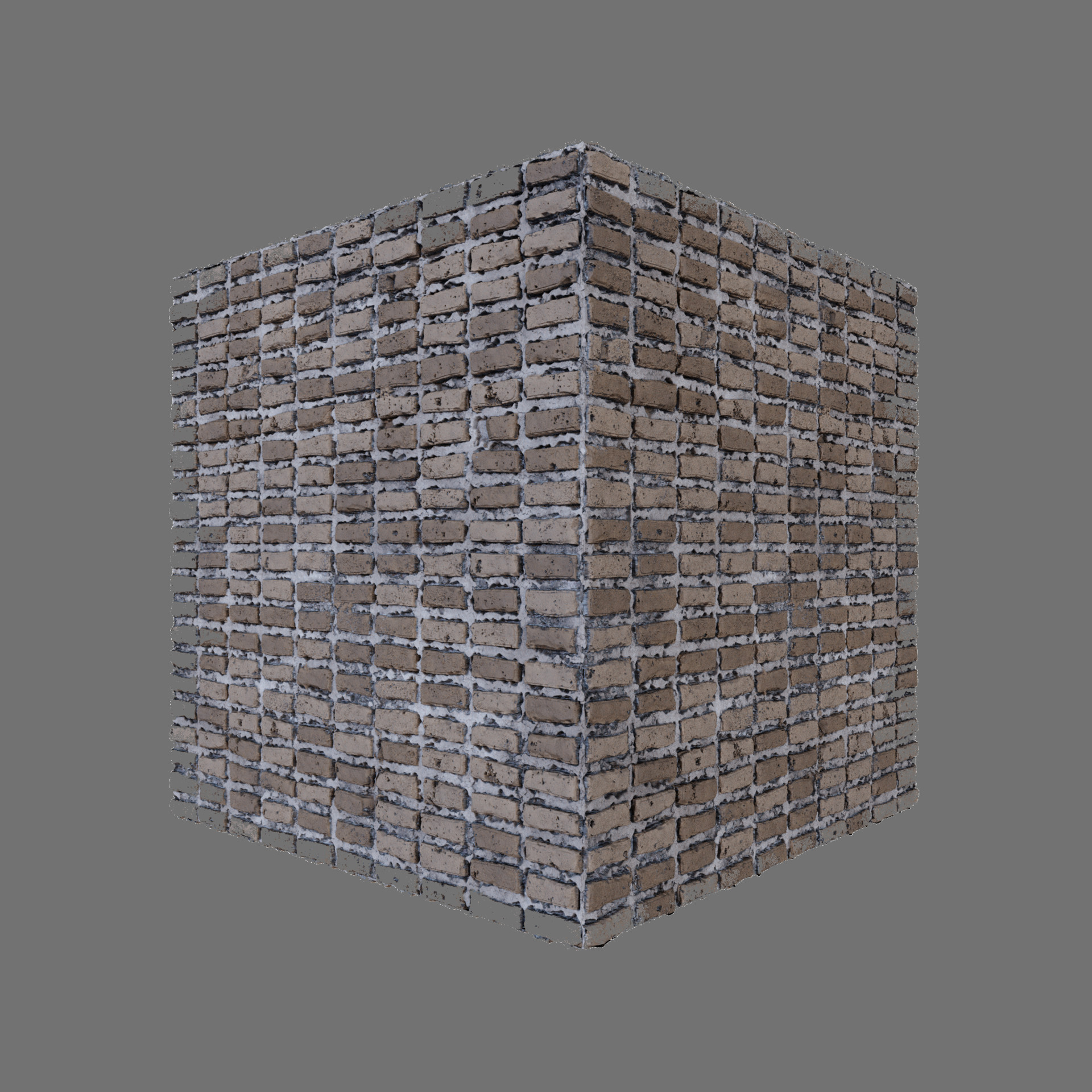 Vinicius hernandes bricks