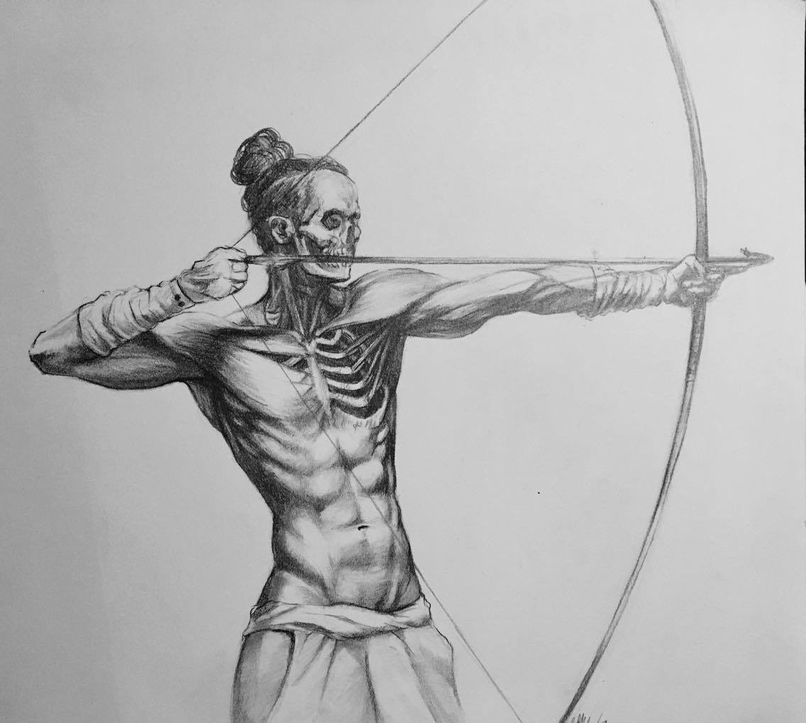 Bme Artwwork Anatomy Of Archery