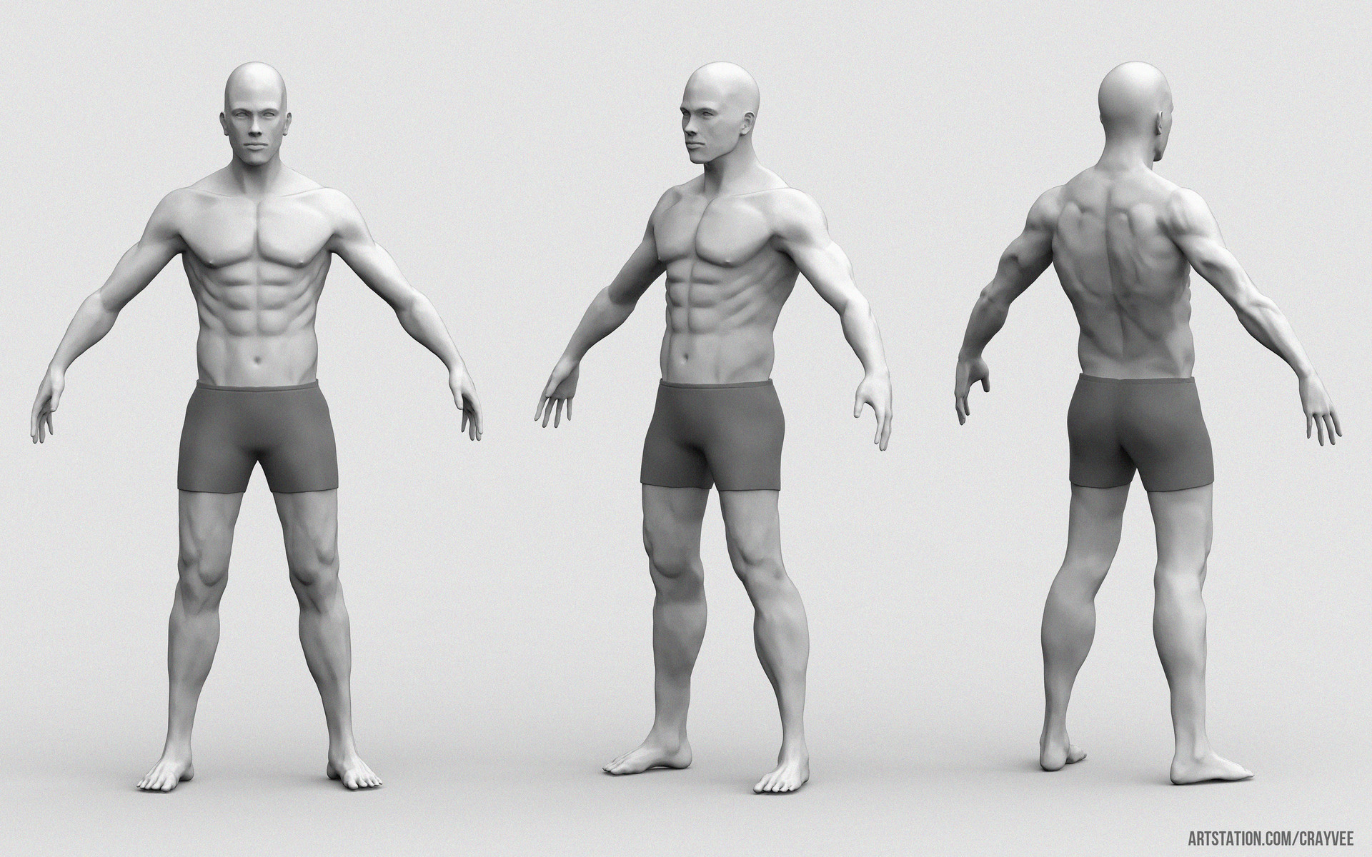 ArtStation - Low Poly Male Anatomy - Marmoset Viewer, Cray Vee