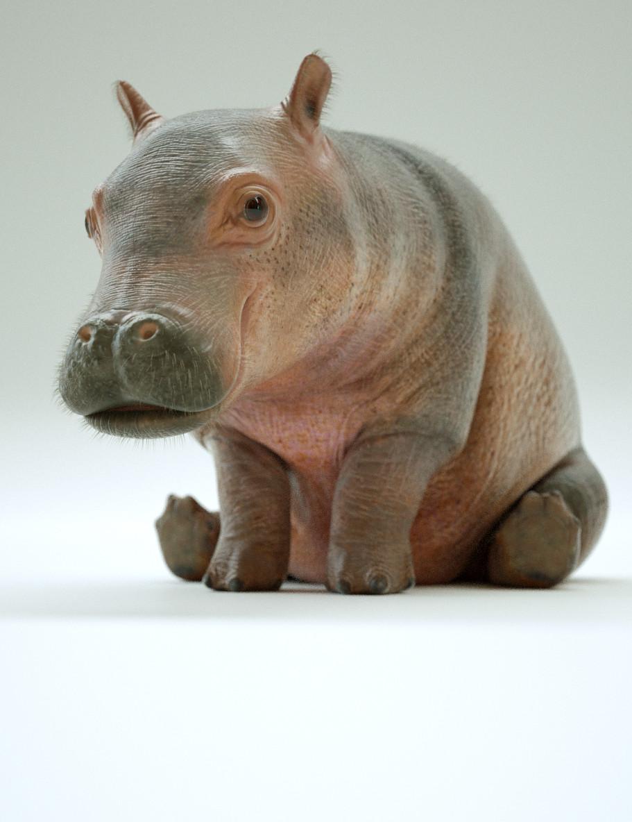 Paul massey hippo a 07