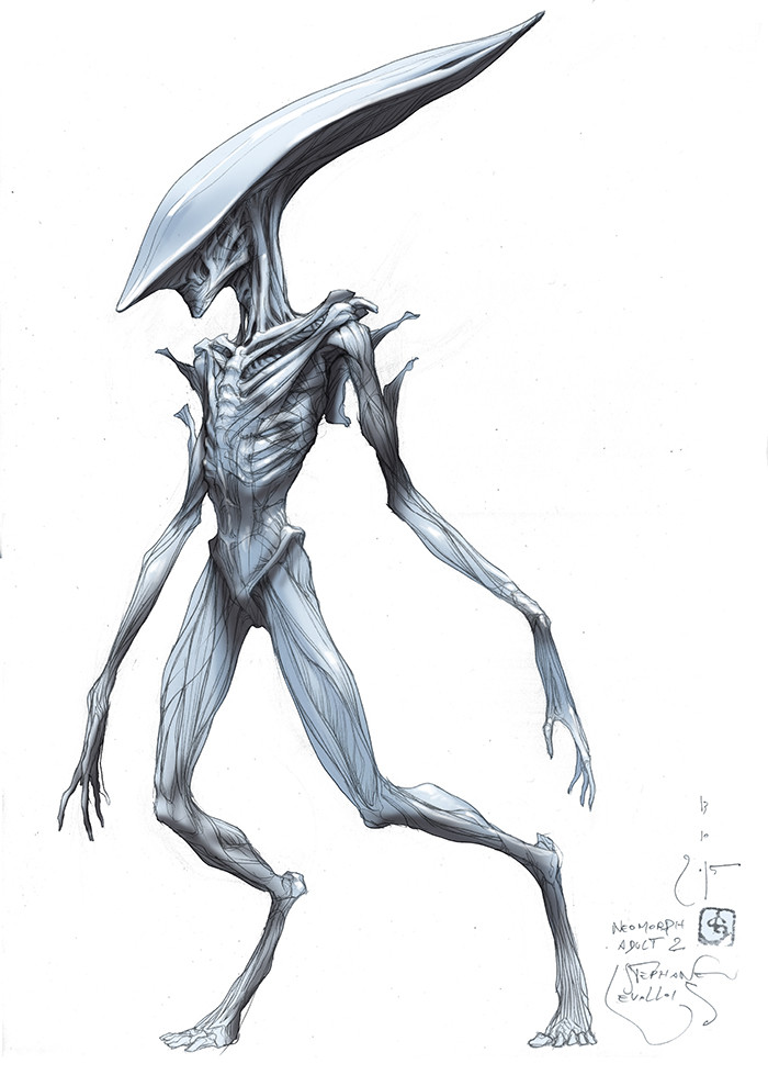 neomorph adult 2 color first concept