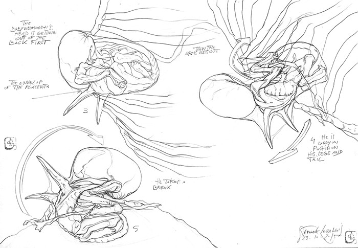 study for baby neomorph's back birth B&w p2