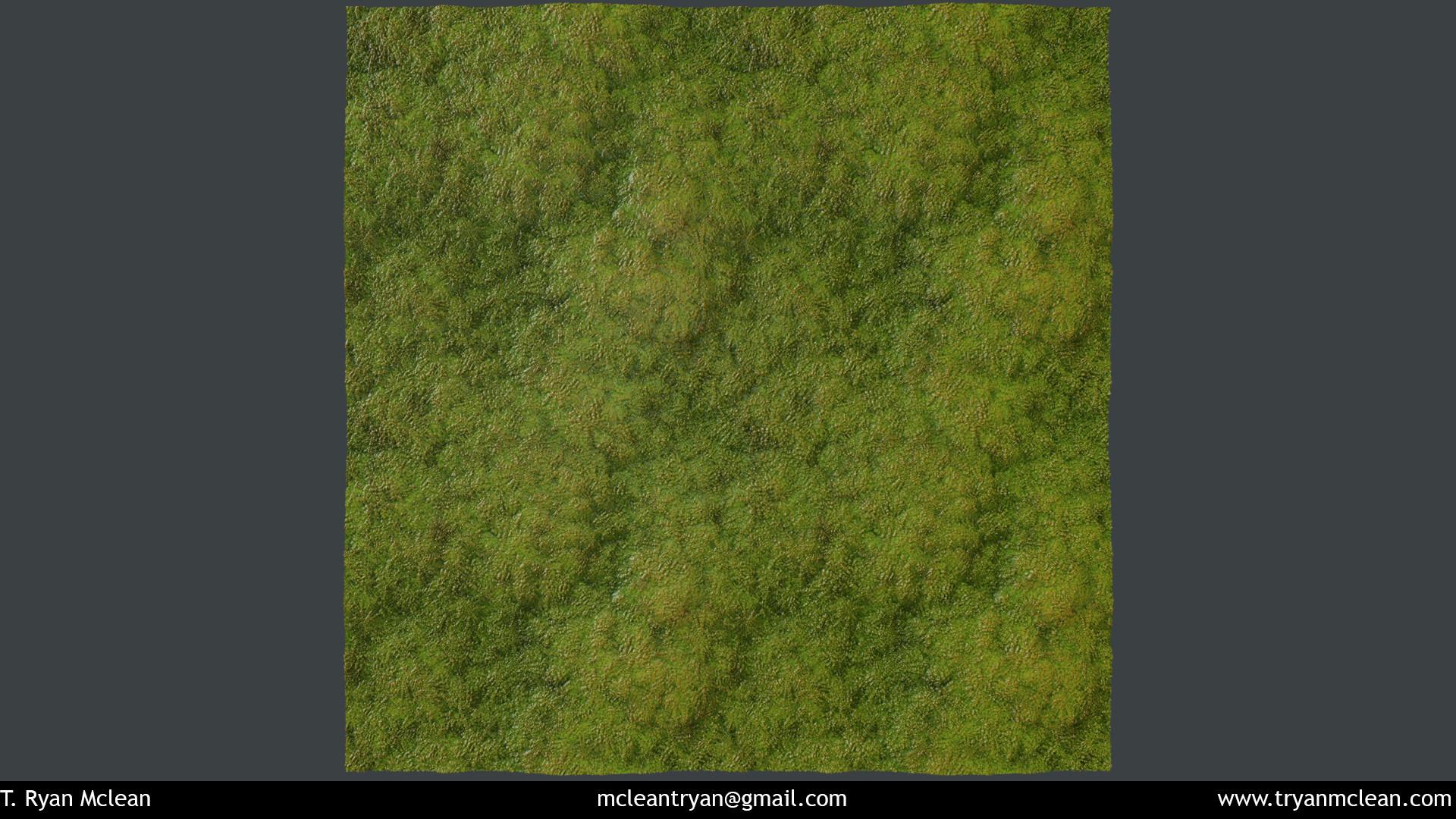 T ryan mclean moss 02