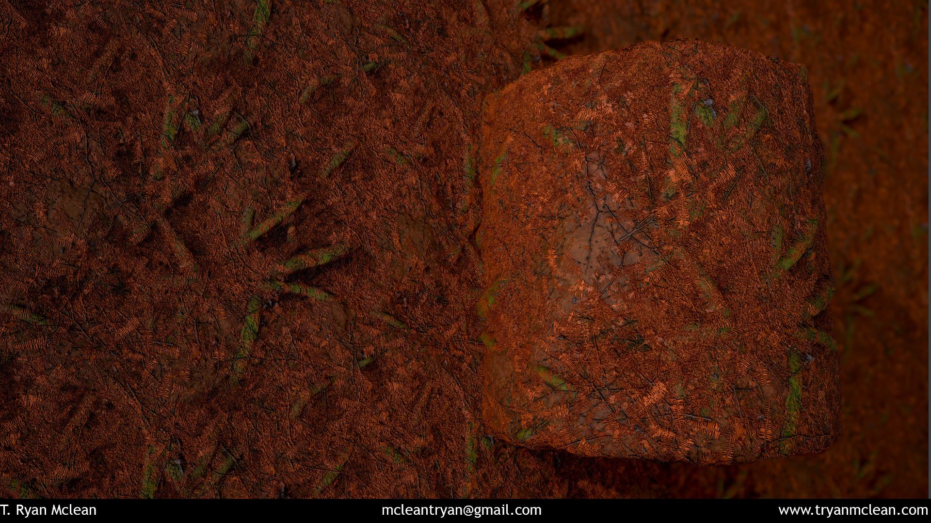 T ryan mclean forest floor 01