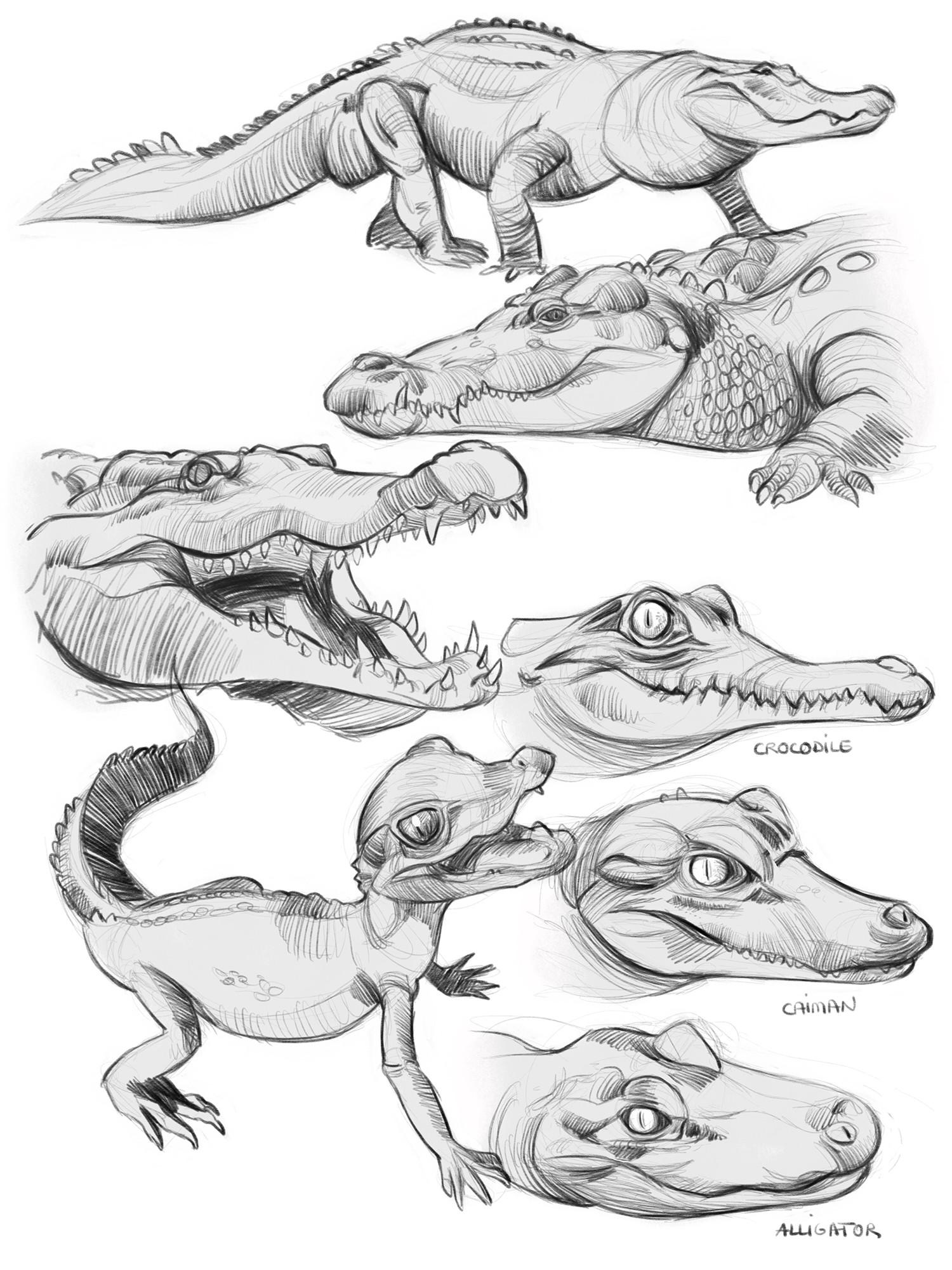 Monica ion crocs