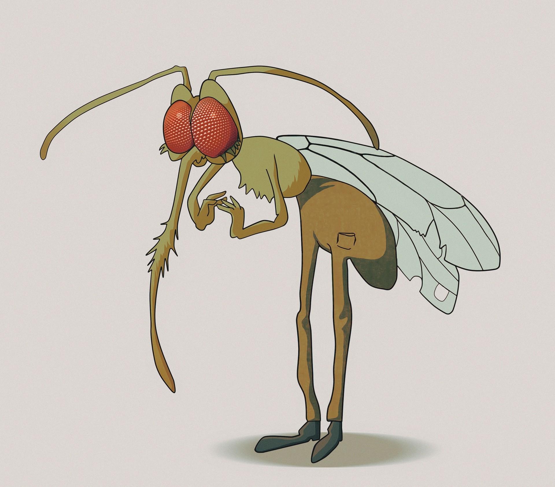 Patryk reczko komaros2