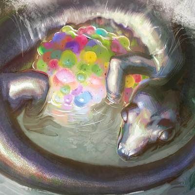 Ameilee sullivan salapub
