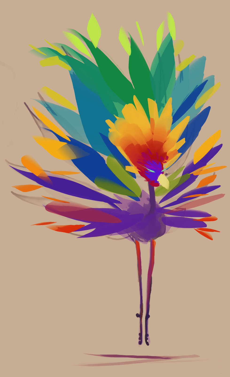 Colorful Animal