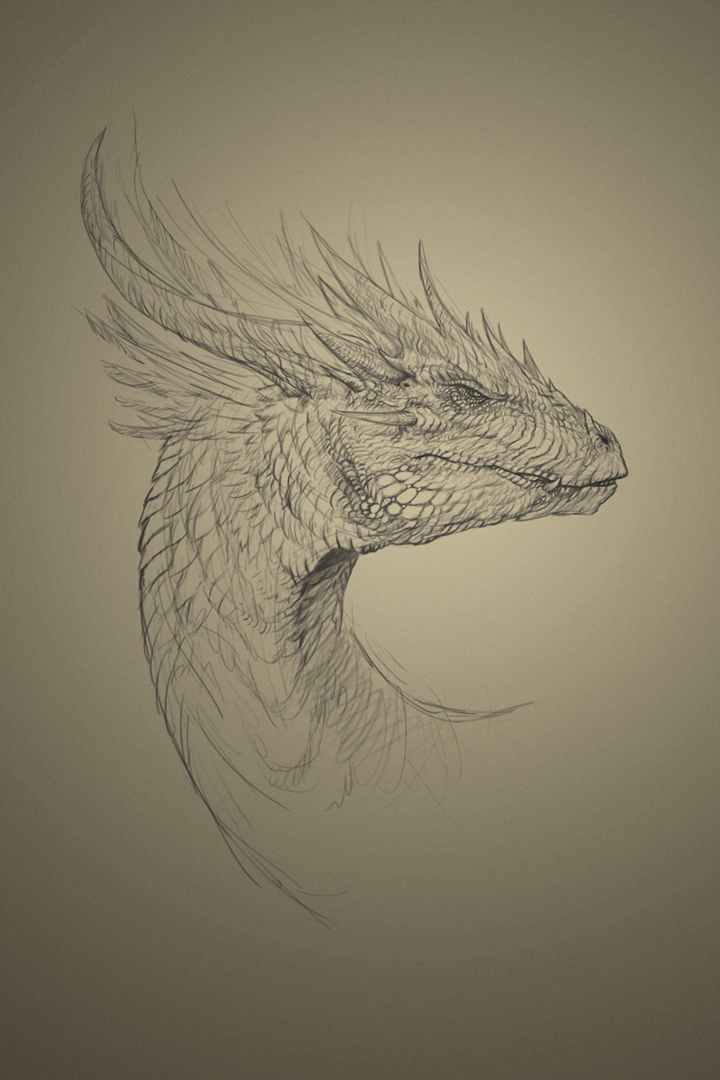 Robert crescenzio dragon concept med