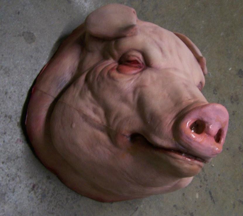 Charles wills pigshead1