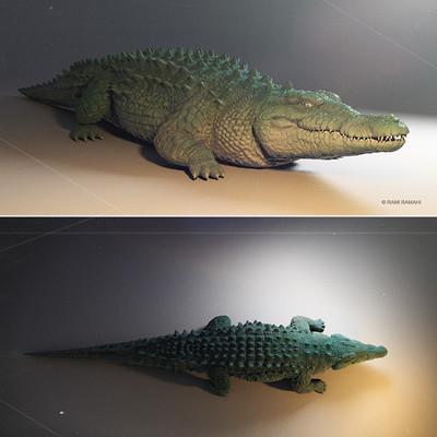 Rami ramahi crocodile